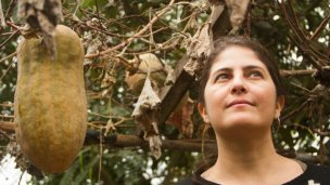 Repudio para la escritora elisense Selva Almada