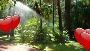 El Jardín Botánico recibe a los enamorados de Concordia