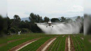 Proponen crear una agencia federal para el control del uso de agrotóxicos