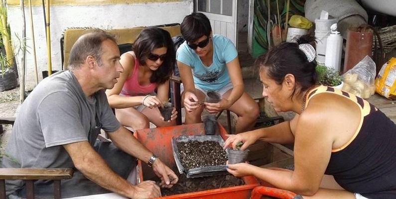 Un puñado de voluntarios se reúne los sábados para seguir produciendo plantines.