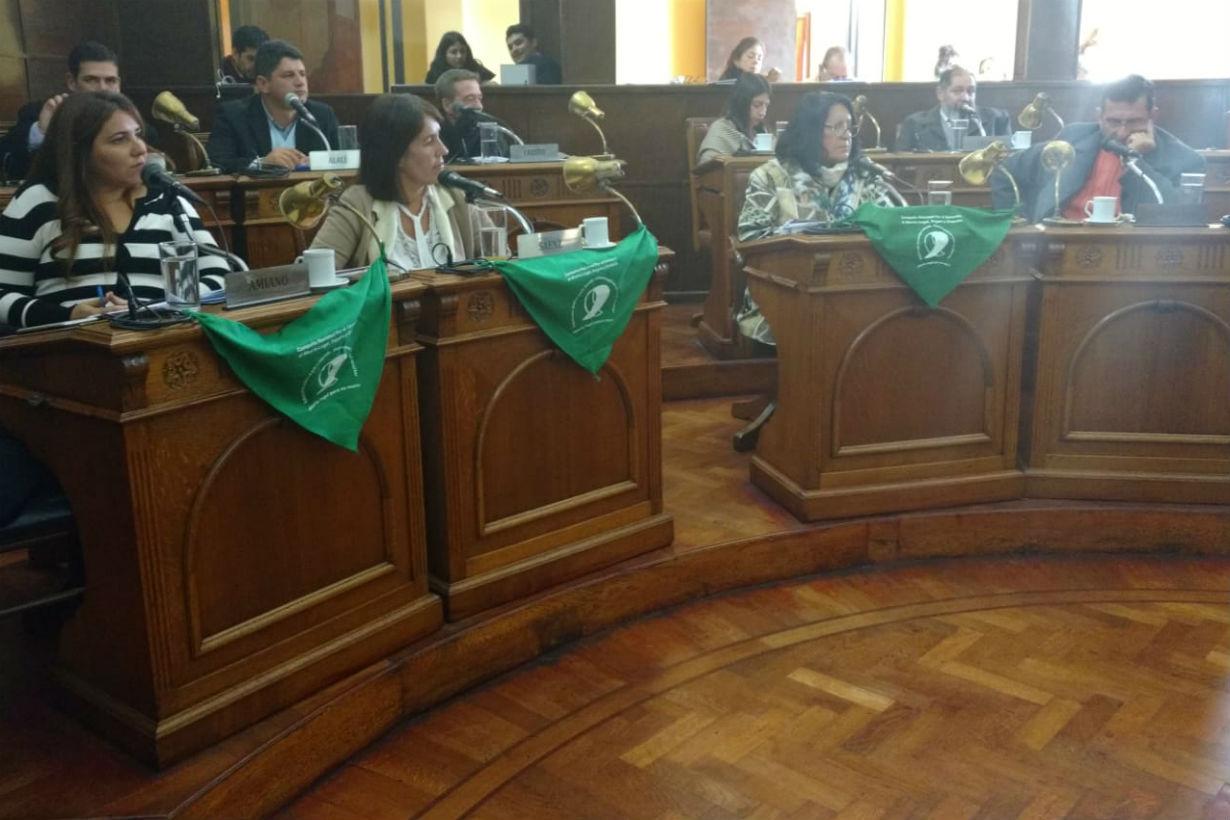 Tres de las concejales sesionaron con el pañuelo verde característico del pedido por aborto legal