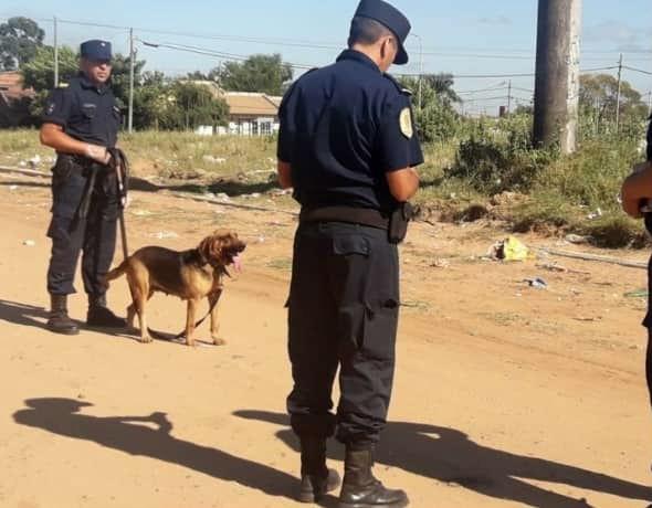 La policía busca con perros al niño