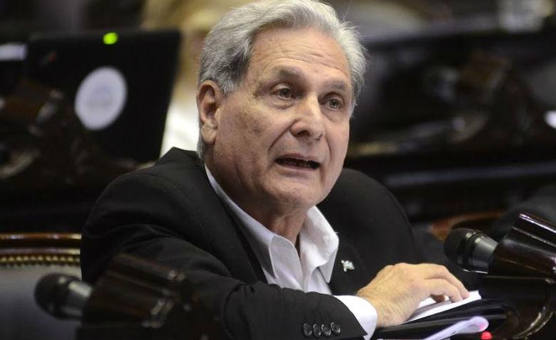 Solanas expuso su propuesta en la reunión conjunta de dos comisiones de la Cámara Baja nacional.