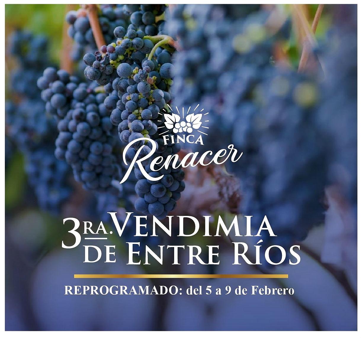 La propuesta enoturística de Finca Renacer, en La Criolla.