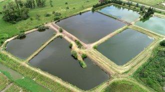 La laguna de tratamiento de Villa Elisa, en vista desde el aire