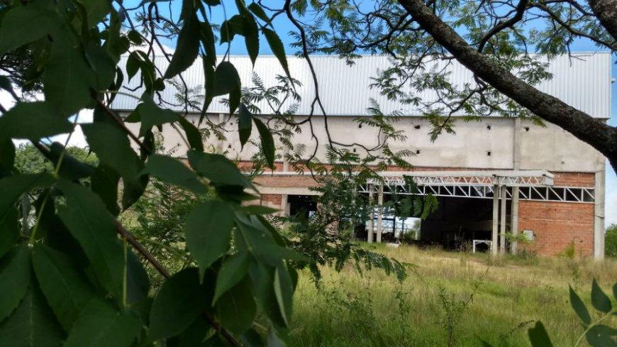 El Gimnasio del Polideportivo, inconcluso y atrapado por la vegetación