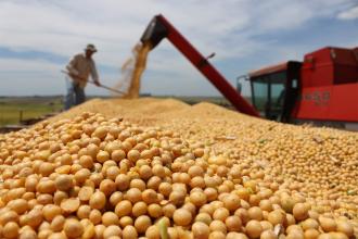 Exportaciones: el 43% proviene de la producción de granos y sus derivados
