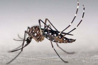 Desde el hospital aclararon cuál es la situación del hombre que podría tener dengue