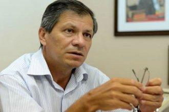 Báez propone crear una fiscalía especializada en maltrato animal