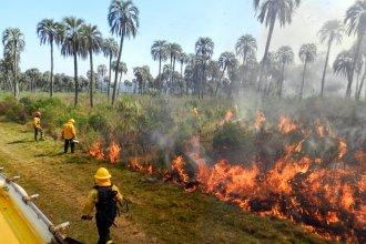 ¿Qué ocasionó el incendio en El Palmar?