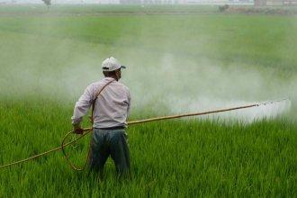 Un estudio reveló presencia de glifosato en el aire de una ciudad entrerriana