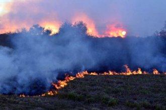 El fuego afectó a terrenos que pertenecen al Ejército