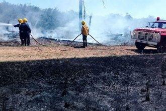 Quemaban plantas secas y provocaron un grave incendio