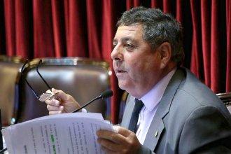 """De Ángeli advierte que al aborto legal """"lo tendríamos que pagar todos los argentinos"""""""