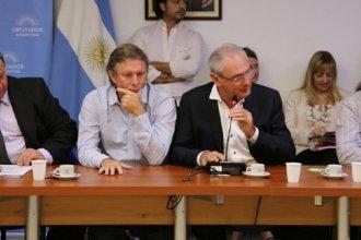 Los dos entrerrianos frente a la comisión de Agricultura en la Cámara Baja
