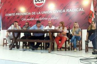 ¿Por qué los radicales no votaron sobre el juicio político a Urribarri?