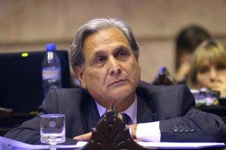 Glifosato: Solanas criticó la decisión del juez Seró