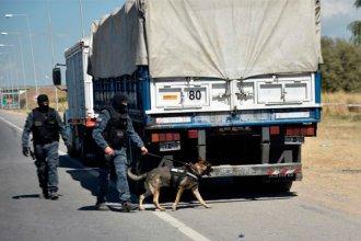 Suman restricciones a la circulación de vehículos pesados