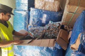 Incautaron mercadería ilegal valuada en más de 34 millones de pesos