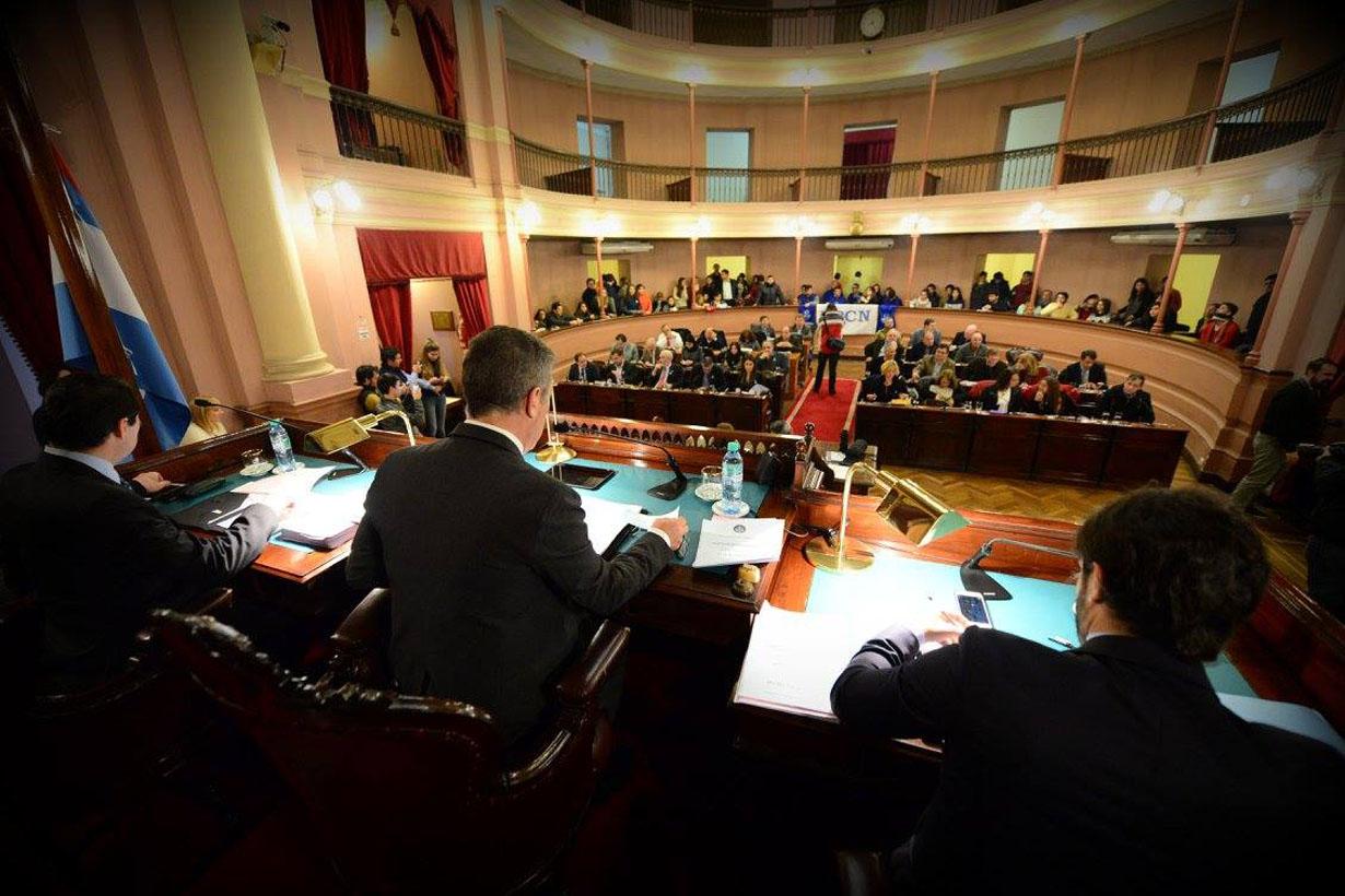 El oficialismo votó una resolución de rechazo.