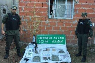 """A pocos metros de la escuela, detuvieron a un vendedor de drogas en su """"kiosco"""""""