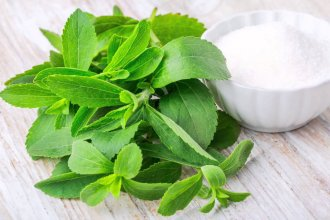 La primera industria de stevia del país podría estar en Entre Ríos