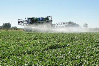 En Entre Ríos, miles de hectáreas quedarían sin producir por restricciones a los agroquímicos