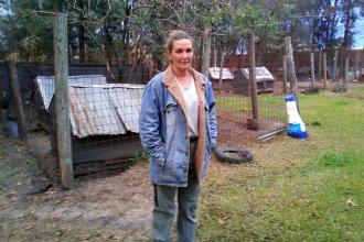 La Justicia allanó un refugio de la Sociedad Protectora de Animales