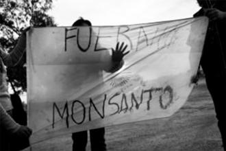 Nuevo golpe para Monsanto, esta vez desde Estados Unidos