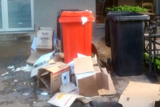 Recogiendo basura... a medias