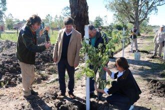 CARU donó 250 especies arbóreas autóctonas y nativas de la zona a Federación