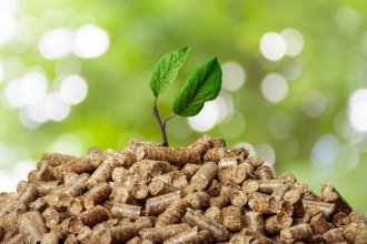 Biomasa, lo que nos queda
