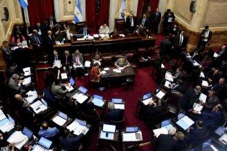 Debate en Congreso y ley vetada: qué dijeron senadores entrerrianos