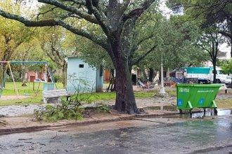 La fuerte tormenta dejó sin luz a varios sectores de la ciudad