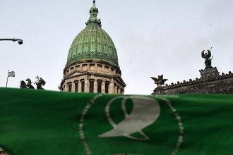 El Senado fijó fecha para votar el proyecto de despenalización del aborto