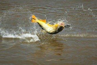 Uruguay decretó una zona de reserva para la pesca deportiva