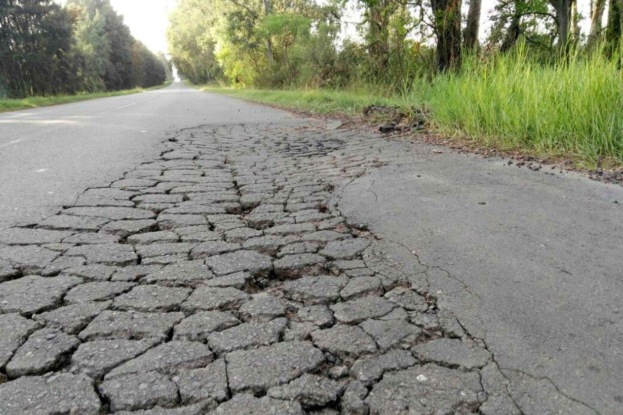 Así está el camino de acceso a Puerto Yeruá.