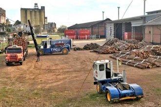 Un buque transportará madera en contenedores con destino a China