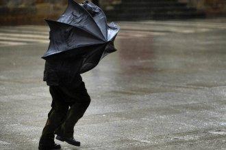 Alerta en la provincia por vientos con ráfagas de hasta 85 kilómetros por hora