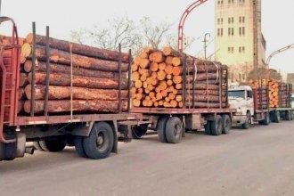 Entre Ríos exportará maderas para la fabricación de muebles chinos