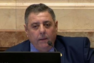 """Retenciones al campo: De Angeli criticó la """"falta de diálogo"""" y dijo que Fernández """"está faltando a la verdad"""""""