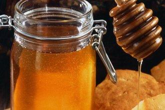 Importadores de miel llegan a Entre Ríos para la Fiesta Nacional de la Apicultura