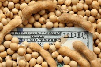 Por el ajuste, provincias y municipios dejarán de recibir el fondo por exportación de soja