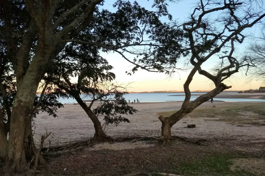 La orilla, lejos. Así está playa Sol.