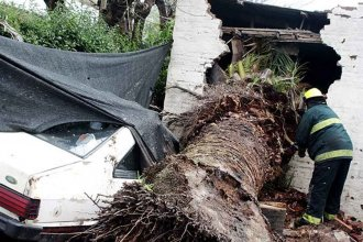Los fuertes vientos también provocaron destrozos del otro lado del río