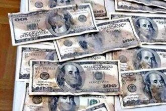 El enigma de los dólares húmedos: ¿De dónde salieron?