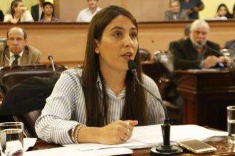 """Es """"serio y acorde a lo que el país necesita"""", según la diputada Acosta"""