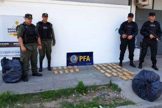 """Juez entrerriano dispuso la detención de 7 personas, tras secuestrar """"narcoencomiendas"""""""