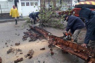 Concordia sufrió anegamientos, voladuras de techos, cortes de luz y el desborde de un arroyo
