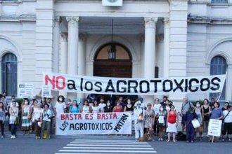 """Bronca de ambientalistas: """"Un decreto por WhatsApp no es un decreto"""""""